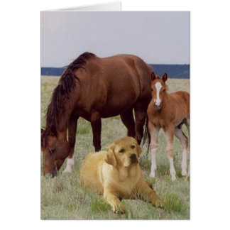 Labrador Retriever With Horses Card