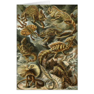 Lacertilia by Ernst Haeckel Vintage Lizard Animals Card