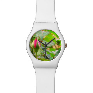 Ladies Spring watch