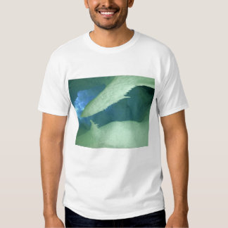 Ladies T / Inside An Ice Cave Tee Shirt