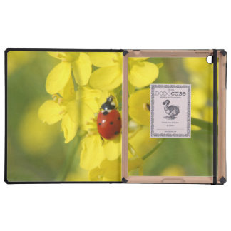 Lady Bug Cases For iPad