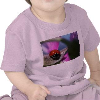 Lady Bug & Purple Flower Baby Shirt