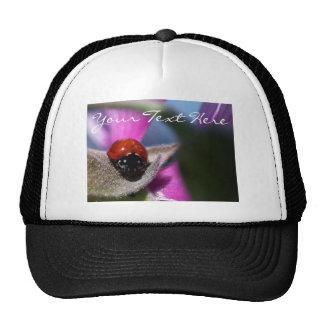 Lady Bug Purple Flower Hat