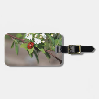 Lady Bug resting near so white flowers in bloom Bag Tag