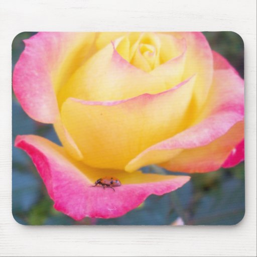 Lady of The Flower Mousepad