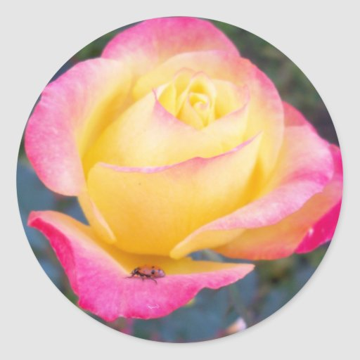 Lady of The Flower Round Sticker
