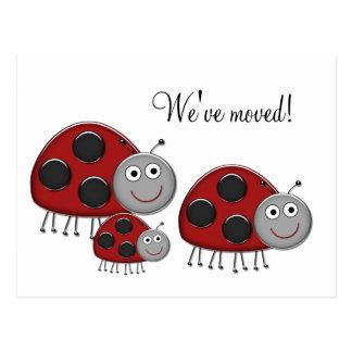 Ladybug Change of Address Cards