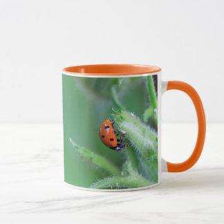 Ladybug Eating Coffee Mug