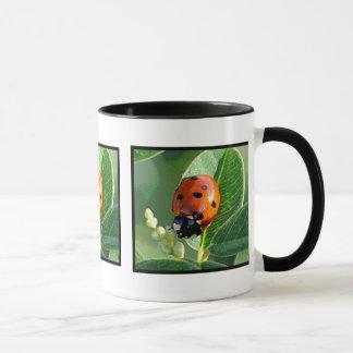 Ladybug, Ladybug ~ Mug