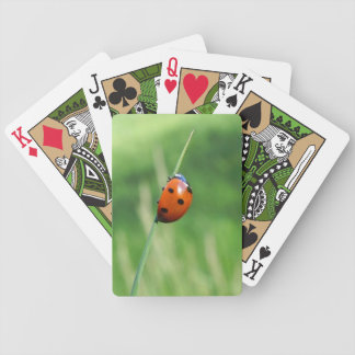Ladybug on a blade of grass Playing Cards