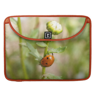 Ladybug on a Daisy Bud MacBook Pro Sleeves