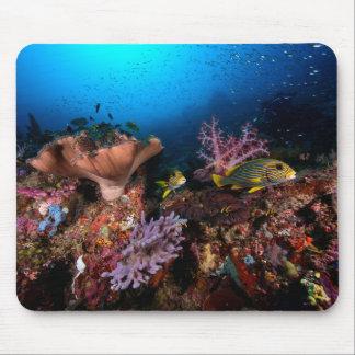 Laja Ampat Underwater Mouse Pad