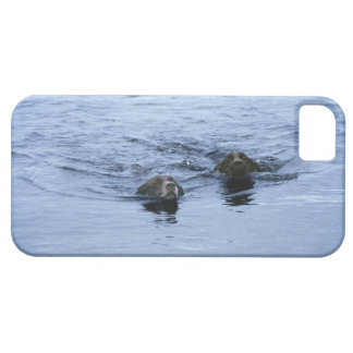 lake district cumbria england barely there iPhone 5 case