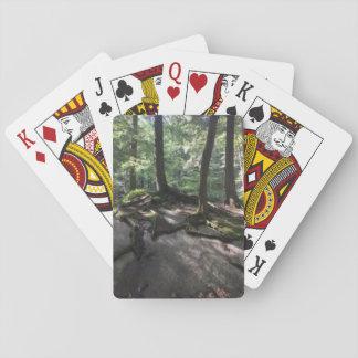 Lake Dunmore and Silver Lake Hiking Playing Cards