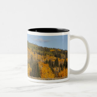 Lambert Hollow, aspen trees Two-Tone Coffee Mug