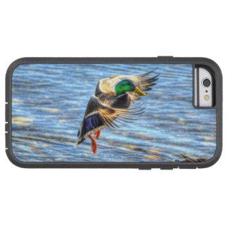 Landing Mallard Duck Drake 5 Wildlife Photo Tough Xtreme iPhone 6 Case