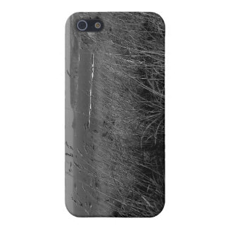 Lands End Case For The iPhone 5
