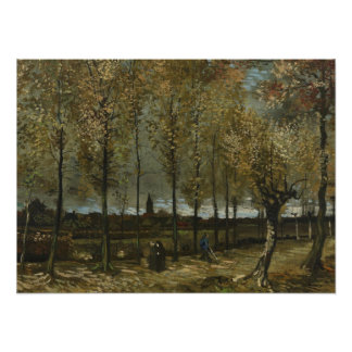 Lane with Poplars by Van Gogh Photo Print