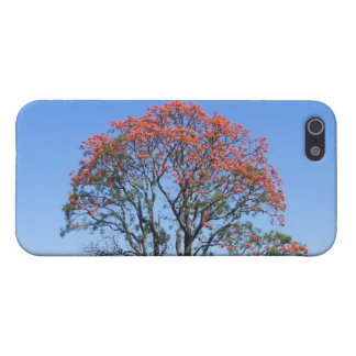lapacho Ipe Hardwood Tree Case For iPhone 5/5S