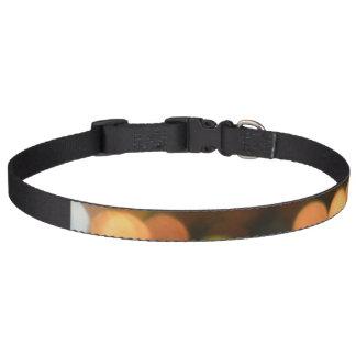 Large dog collar- Bokeh Pet Collar