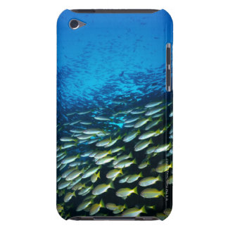 Large group of Bigeye Snapper fish swimming iPod Touch Cover