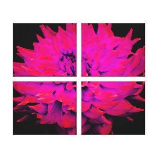 Large Magenta Dahlia Canvas Print