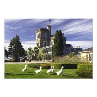 Larnach Castle, Otago Peninsula, Dunedin, Photographic Print