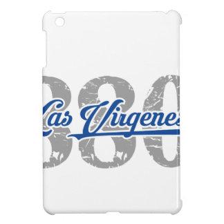 Las Virgenes Locals 880 iPad Mini Cases