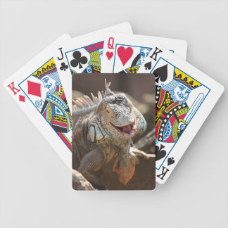 Laughing Iguana Photography Bicycle Playing Cards