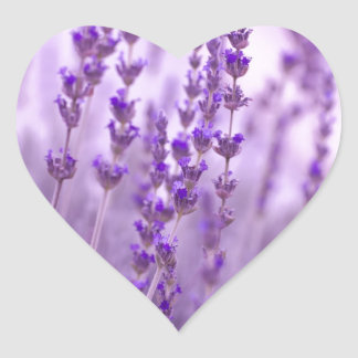 Lavender bliss sticker