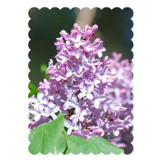 Lavender Lilacs 5x7 Paper Invitation Card