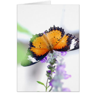 Lavendere & Butterfly Card