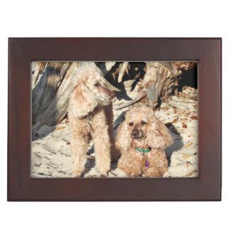 Leach - Poodles - Romeo Remy Keepsake Box
