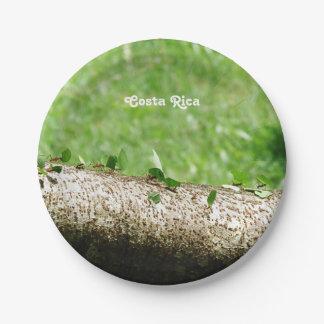 Leaf Cutter Ants in Costa Rica Paper Plate