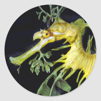 Leafy Sea Dragon Round Sticker