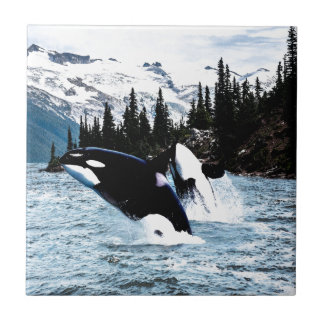 Leaping Orca Small Square Tile
