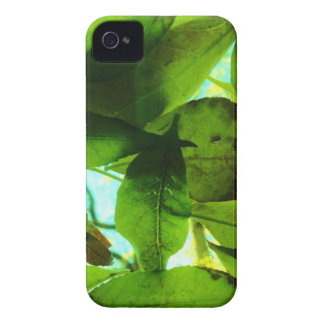 Leaves on blue sky Case-Mate iPhone 4 case