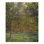 Lemon Grove in Bordighera by Claude Monet Print