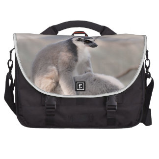 Lemur in Madagascar Computer Bag