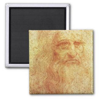 Leonardo Magnets
