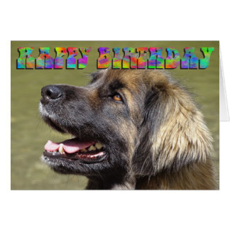 Leonberger birthday card