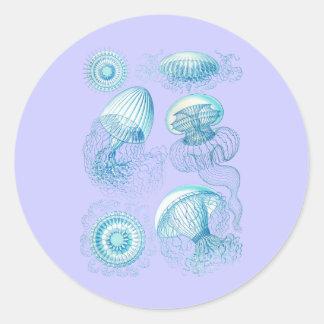 Leptomedusae Classic Round Sticker