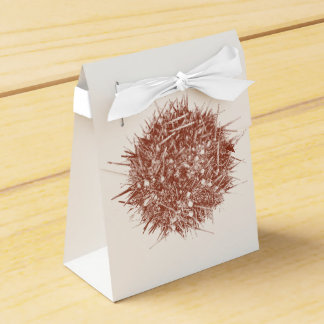 Letterpress Chilean Sea Urchin (Loxechinus albus) Party Favour Boxes
