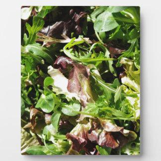 Lettuce Plaque