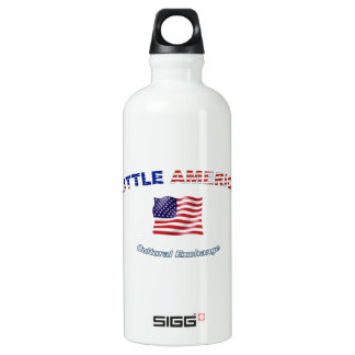 Liberty Bottle SIGG Traveller 0.6L Water Bottle
