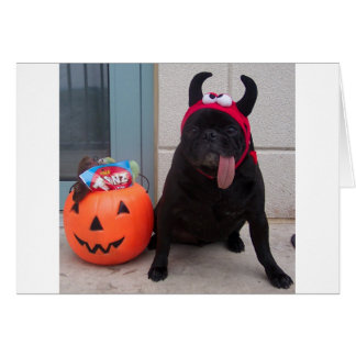 Licker Treat Greeting Card