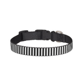 Licorice Black and White Cabana Stripes Dog Collar
