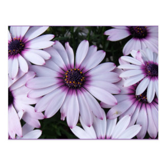Light Purple Flowers with Purple Background Postcard
