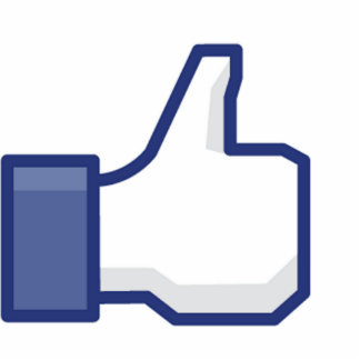 Like Hand - FB Thumbs Up Photo Sculptures