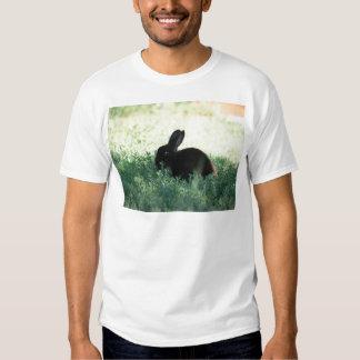 Lil Black Bunny Tshirts